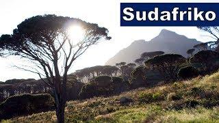 Vizito al Sudafriko | Esperanto vlogo