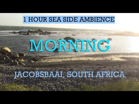 1 Hour Relaxing Seaside Ambience (South Africa) -  Early-Morning Birds and Distant Ocean rumble