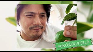The Greener Padilla