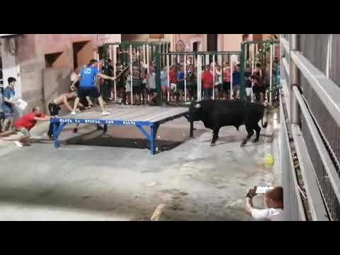 Un toro lanza por los aires a un turista en la localidad de Calpe