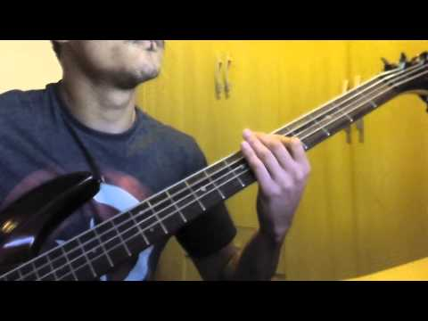 I Love This Bar - Toby Keith (Bass Cover)