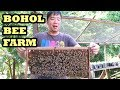 Bohol Bee Farm, Shell Museum and Hinagdangan Cave