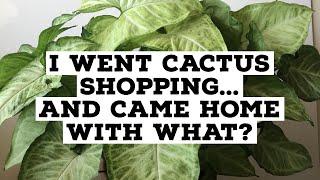 Let's Go Plant Shopping! | Plant shopping & Plant haul