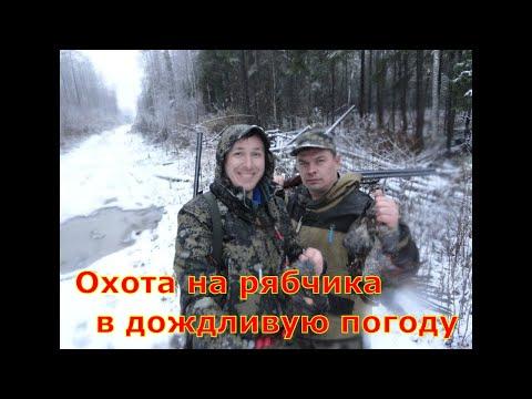Рябчик #12 В дождливую погоду охота на рябчика