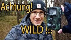 Wildkamera Fotofalle 📸 Was muss ich beachten | meine Tipps!