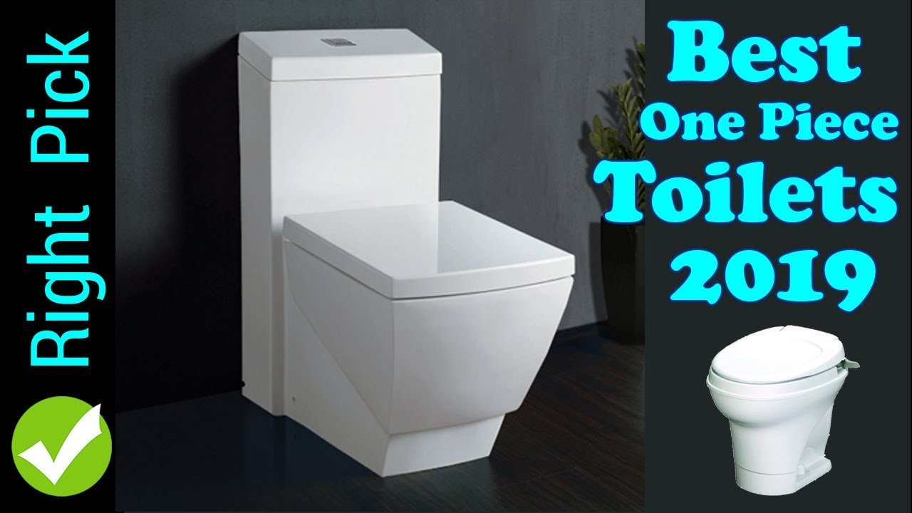 Best One Piece Toilet 2019 Best Toilet In The World