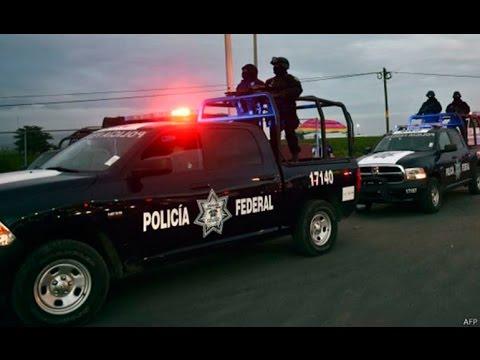 --POLICIA FEDERAL EN ACCION--2016 (HD)