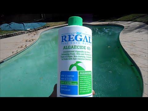 kill algae using regal algaecide 60 polyquat youtube. Black Bedroom Furniture Sets. Home Design Ideas