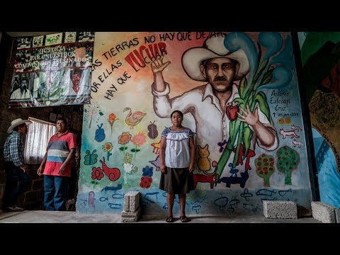 Morir defendiendo tu territorio: indígenas asesinados por proteger su legado