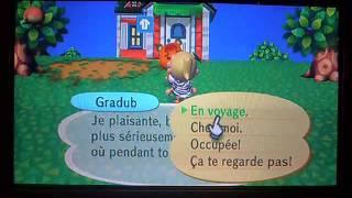 Animal Crossing Wii- Présentation de ma ville et de ma maison !