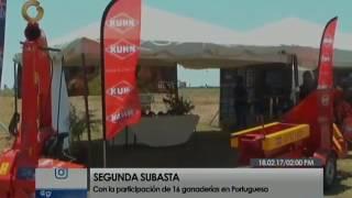 Agropecuaria Aguadia presente en la segunda subasta del ganado cebú en Portuguesa