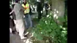 Polizeihund beißt Fortuna Köln Fan