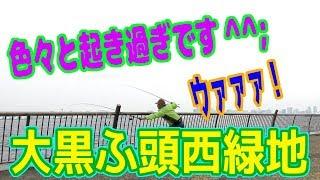 釣り動画ロマンを求めて 267釣目(大黒ふ頭西緑地)