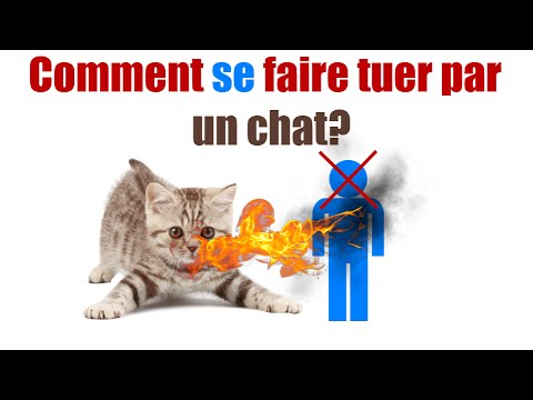 comment se faire tuer par un chat youtube. Black Bedroom Furniture Sets. Home Design Ideas