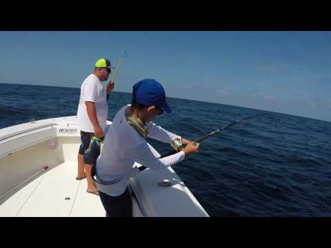 Offshore with Johnny B Sportfishing