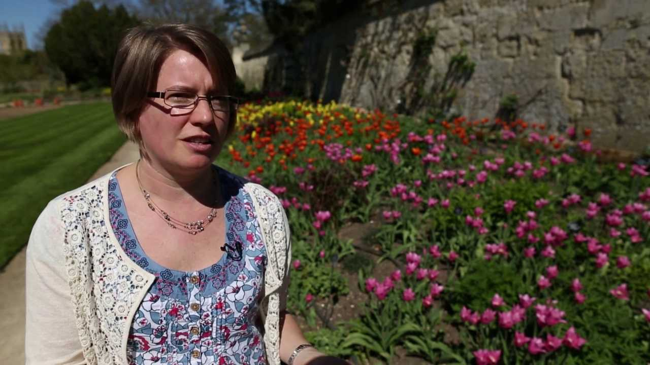 Chemistry in the garden - YouTube