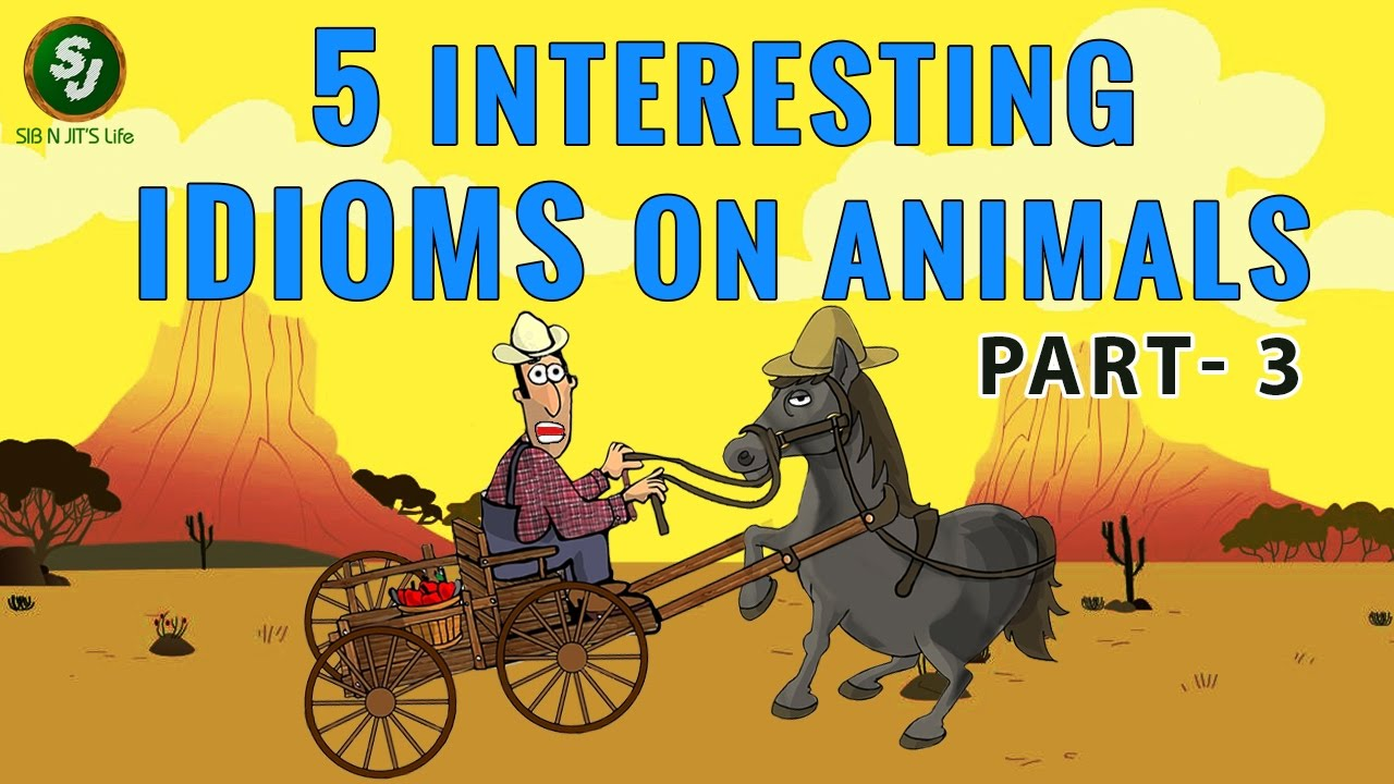 5 Intresting Animal Idioms Part 3 Youtube