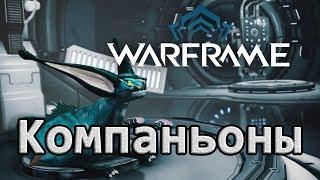 Компаньоны в игре Warframe