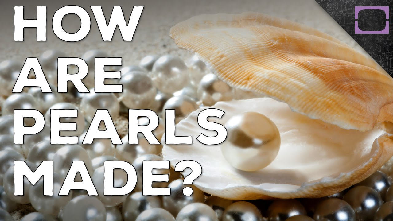 How Are Pearls Made? - YouTube