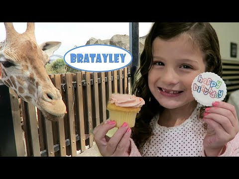 Thumbnail: Hayley's Australian Birthday! | Feeding Giraffes and Koala Encounter (WK 243.7) | Bratayley