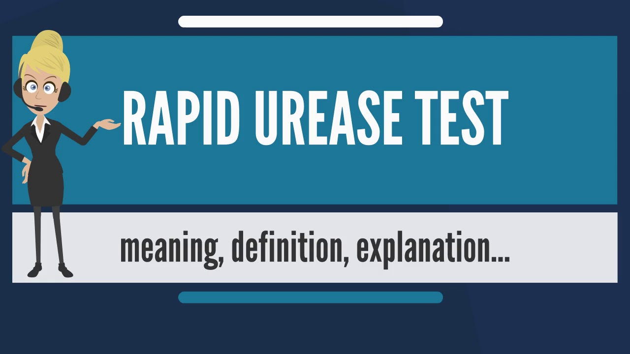 Download What is RAPID UREASE TEST? What does RAPID UREASE TEST mean? RAPID UREASE TEST meaning & explanation
