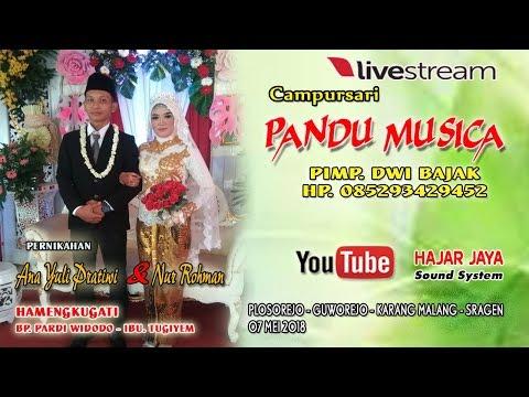 LIVE PANDU MUSICA//HAJAR JAYA SOUND//LIVE PLOSOREJO - GUWOREJO - KARANGMALANG - SRAGEN