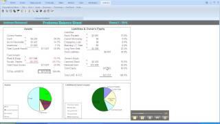 Capsim-Financial Ratios