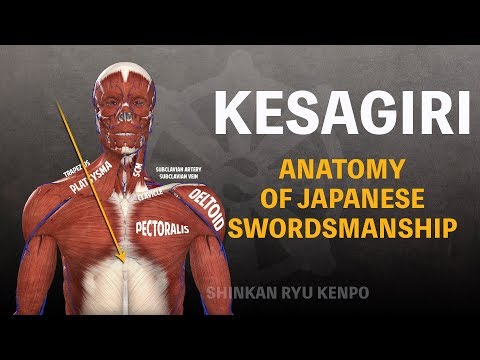 Japanese Swordsmanship Cutting Kesagiri Anatomy In Iaido