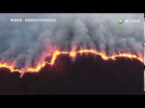 Forest fire spreading from Mongolia into north China's Hulunbuir