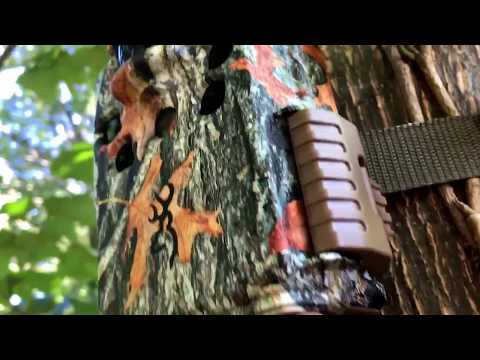 2017 Browning Dark Ops HD Pro black flash trail camera review BTC-6HDP