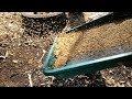 Perawatan harian budidaya ternak lovebird ( membersihkan kulit pakan )   LOVEBIRD farm