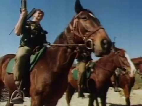 South African Army Horses & Dogs