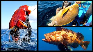 INDO TALES - EPISODE 9 Nice day of spearfishing and dinning at the old fisherman's house