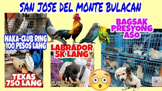 PETS AND ANIMALS MARKET IN SAN JOSE DEL MONTE BULACAN PHILIPPINES UPDATE PART1.vlog#151