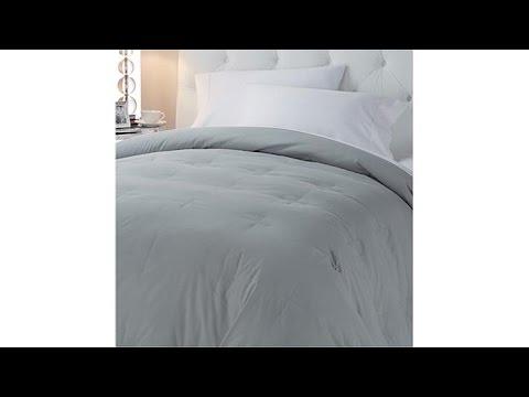 Concierge Collection Platinum Goose Down Comforter  Twin