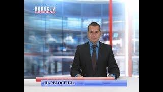 Ярмарка «Дары осени» в Новочебоксарске продолжается
