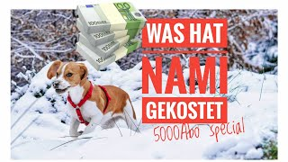 5000 Abo special | Was hat Nami gekostet| Room Tour  Nami.and.Tommy
