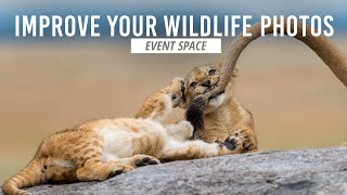 Take Your Wildlife Photography to the Next Level | B&H Event Space