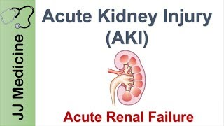 Acute Kidney Injury (AKI) | Acute Renal Failure | Diagnosis, Causes and Treatment