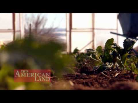Sustainable Winter Agriculture