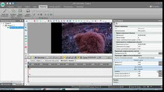 Как сделать чтобы не было черных полос на видео в VS DC Free Video Editor