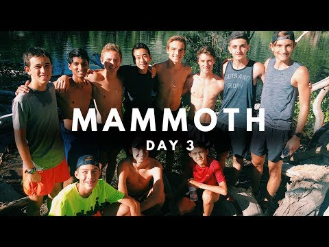 CRAZY ROPE SWING AND SWIMMING IN A LAKE  | MAMMOTH VLOG 3