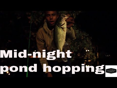 Night Fishing For Bass-socal Pond Hopping