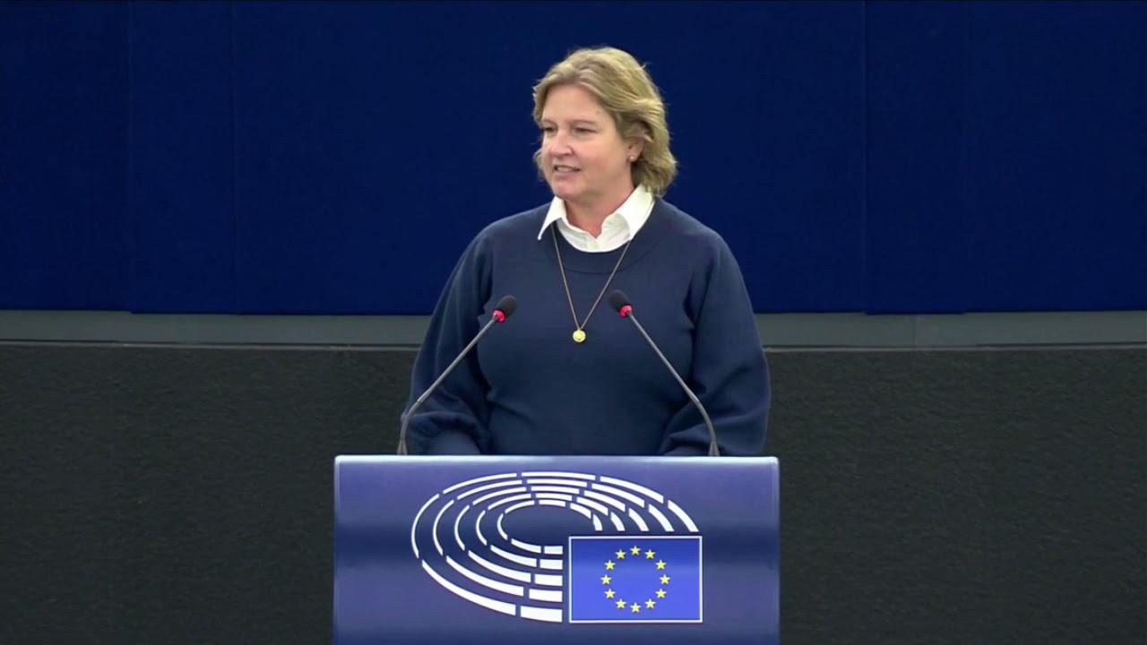 Karin Karlsbro 20 October 2021 plenary speech on COP26
