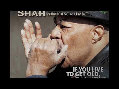 Harmonica Shah - She Used To Be Beautiful