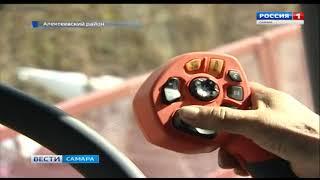 В Самарской области начали уборку подсолнечника