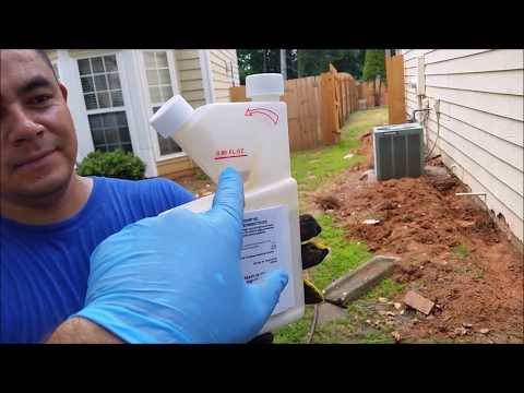 How to Apply  Termidor or Taurus Properly To Kill Subterranean Termites - DIY - Step by Step