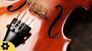 Música Estudiar,  Música Clásico Relajante, Música Instrumental para Estudiar, Ondas Alfa, ♫E163C