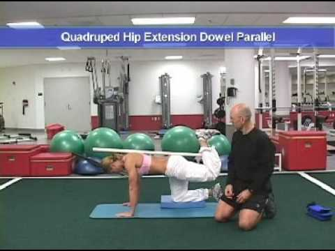 pendulum quadruped hip extension machine