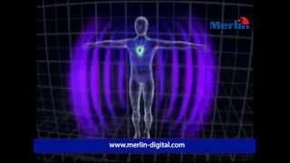 Q-Link Pendant SRT3 - EMF Protection (visit merlin-digital.com)